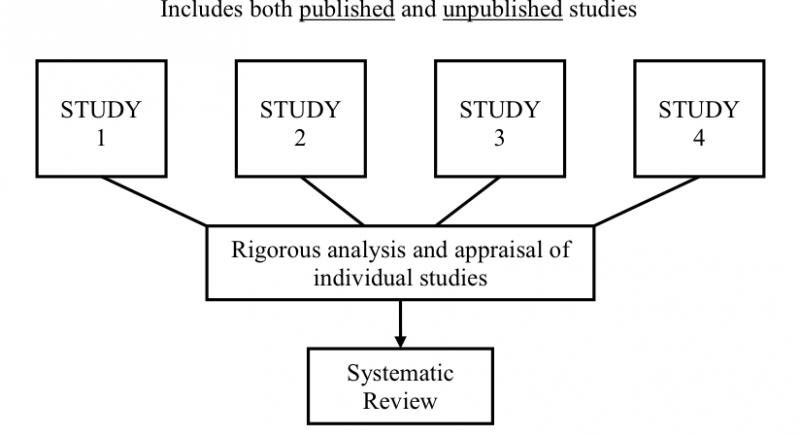 systematic review essay Dignity is a broad and complicated notion that can be used in legal, religious, bioethics, scientific and political contexts with different.